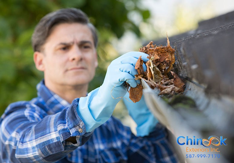 gutter clean leaf guard calgary