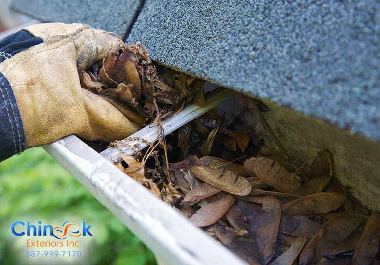 Professional Tips on How To Maintain Your Gutters