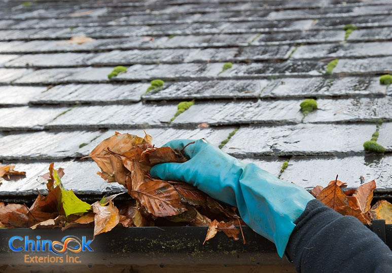4 Hazards Caused By Clogged Eavestrough