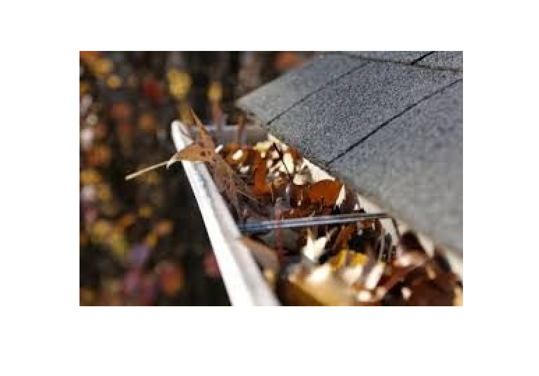 Clogged Eavestroughs?